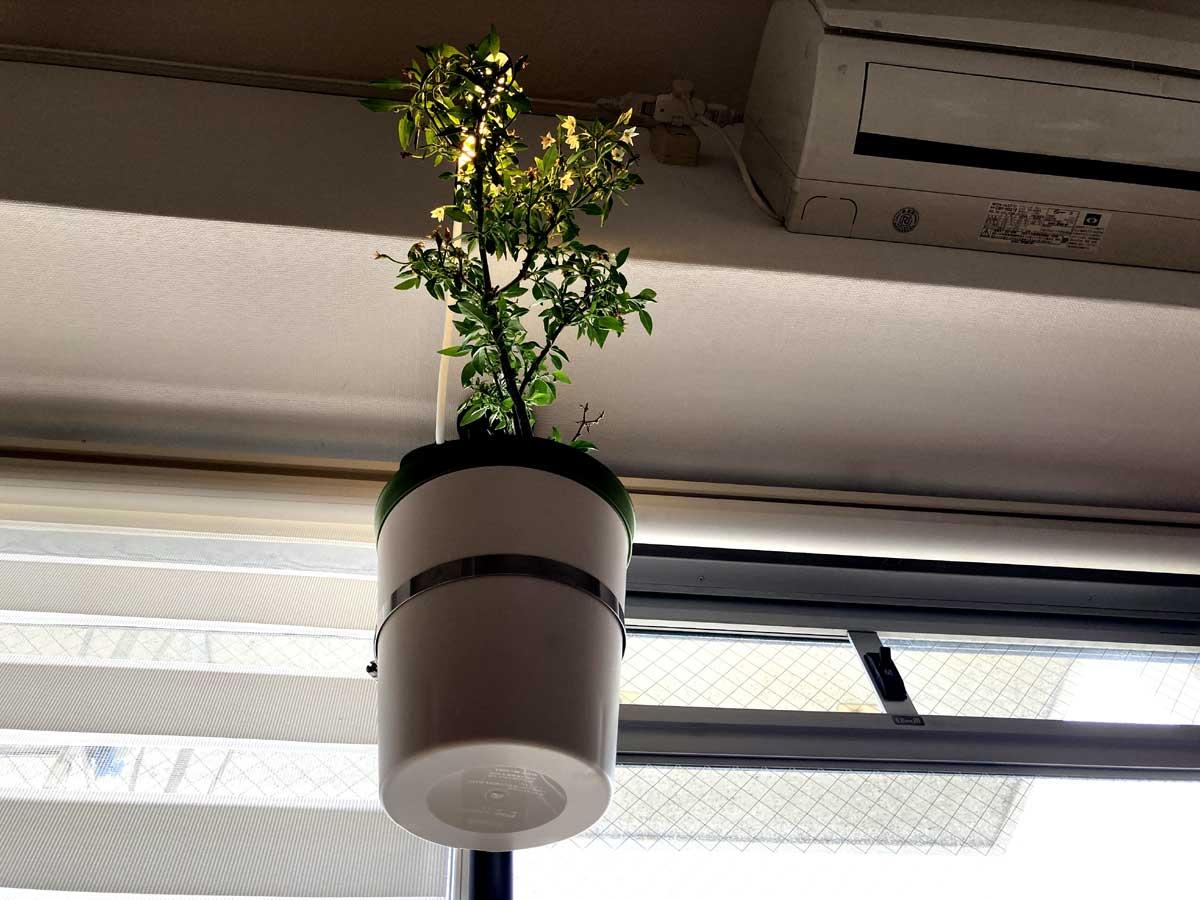 ワイヤーで吊ったり置台で支えたりしないので、スッキリ浮いた印象にまとまります。