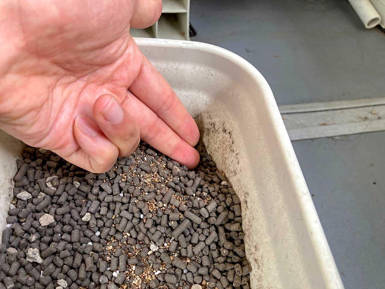 虫が来ない・わかない固形肥料【有機タイプ】
