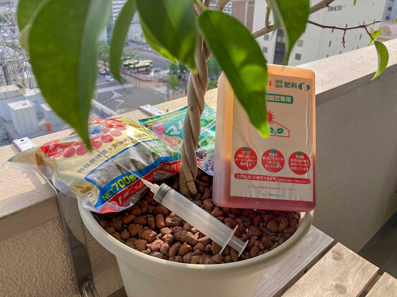 ベランダガーデニングで虫が来にくい肥料の選び方 【有機・化成】
